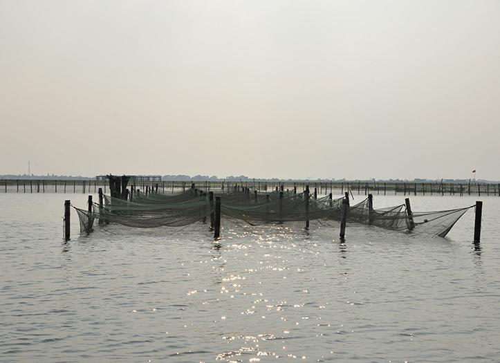 阳澄湖围网